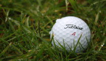 Corporate Golf with Highland Lodges